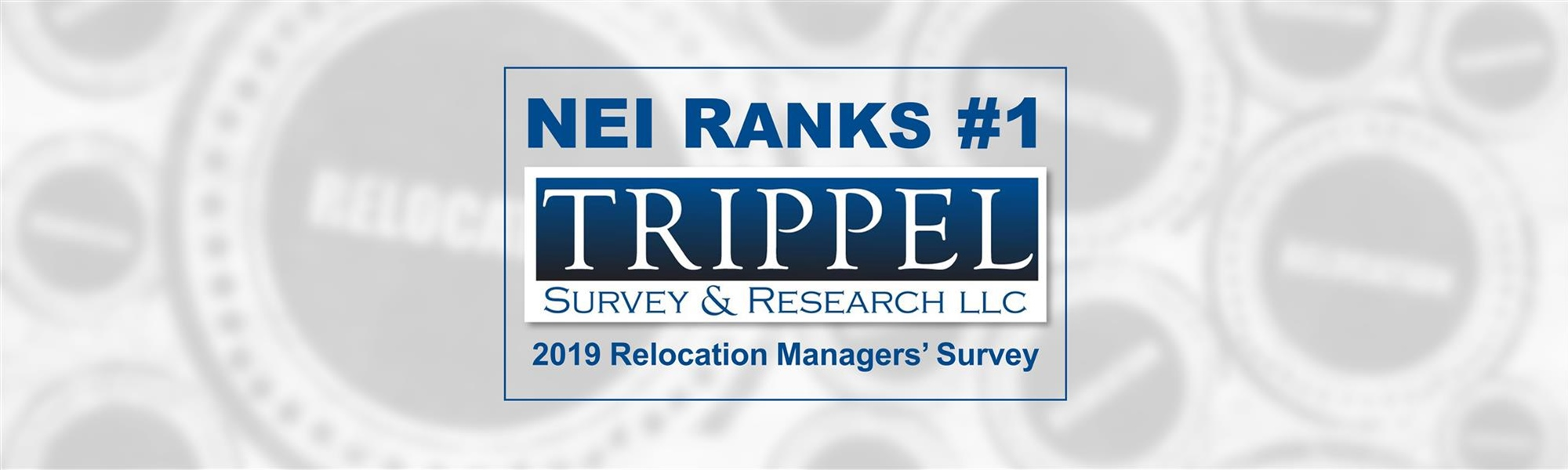 NEI Ranks #1 in Trippel Survey